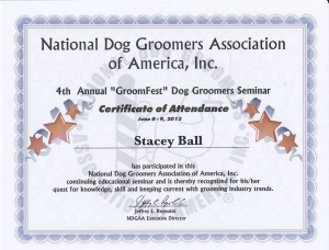 dog obedience classes billings mt
