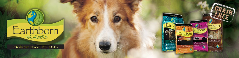 dog training billings mt